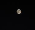 Blue Moon 074115